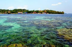 Pulau Terindah di Indonesia - pulau bahawang