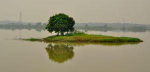 Wisata Alam Jabodetabek Paling Terbaik - danau cibeureum