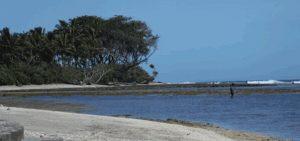 Pantai Pamayangsari