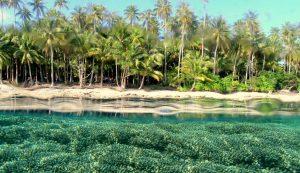 Kepulauan Padaido