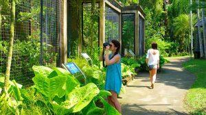Fasilitas Bali Bird Park