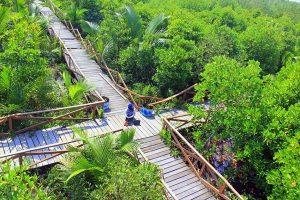 Hutan Mangrove Kampung Laut Cilacap