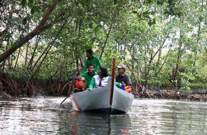 Hutan Mangrove Tapak Tugurejo Semarang