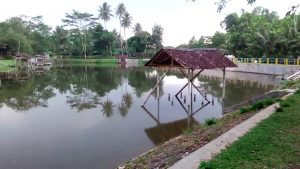 Karangsari Fishing Valley