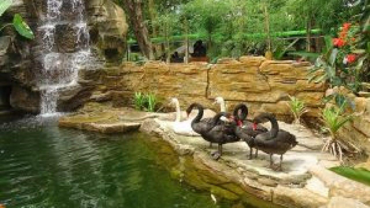 Nama Kebun Binatang Di Jakarta