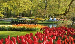 Keukenhof Gardens - Belanda
