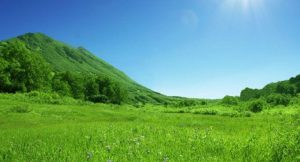 Padang rumput Cihideung
