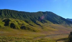 Sabana Gunung Bromo
