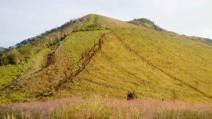 Sabana Gunung Guntur
