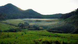 Sabana Gunung Papandayan