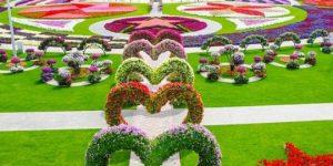 Taman Bunga Nusantara - Cianjur