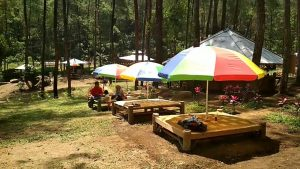 Taman Pinus Bendosari Pujon