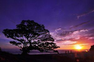sunset pok tunggal