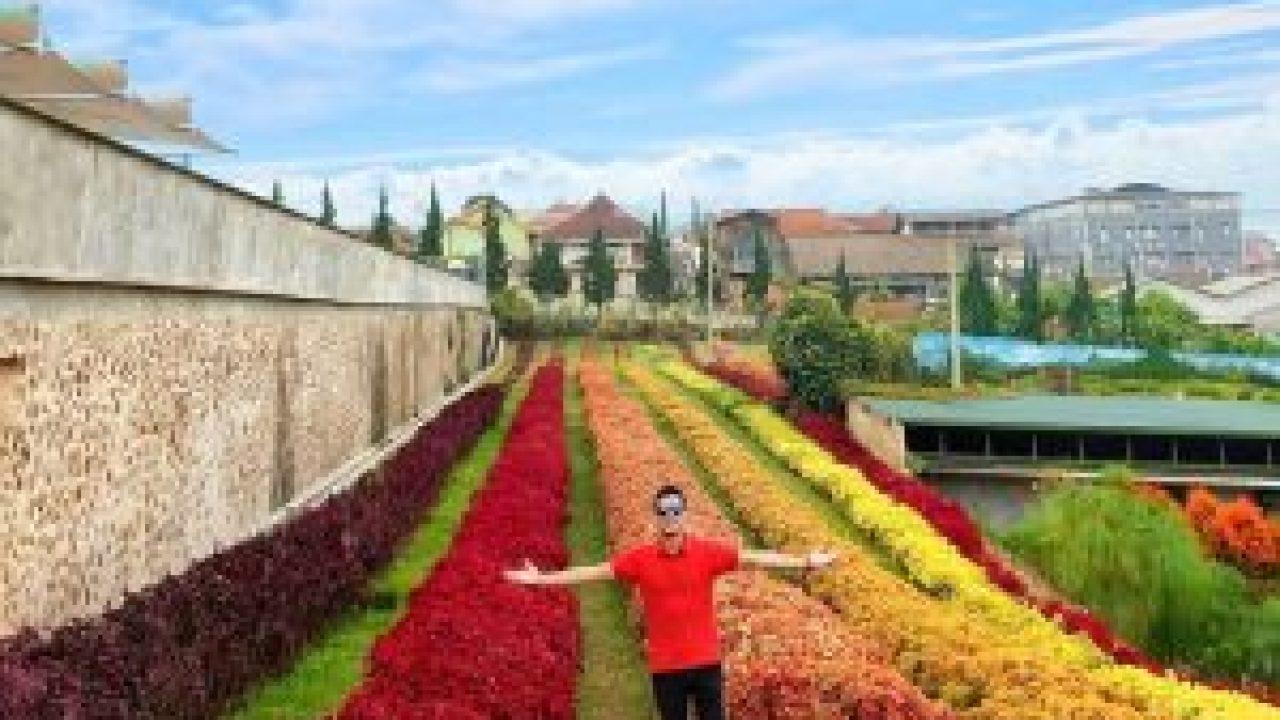 Wisata Rainbow Garden Lembang Yang Wajib Dikunjungi Tempatwisataunik Com